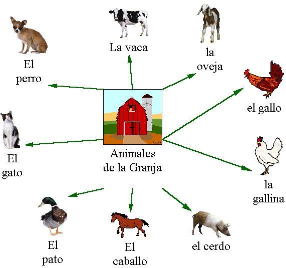 Web for Farm Animals