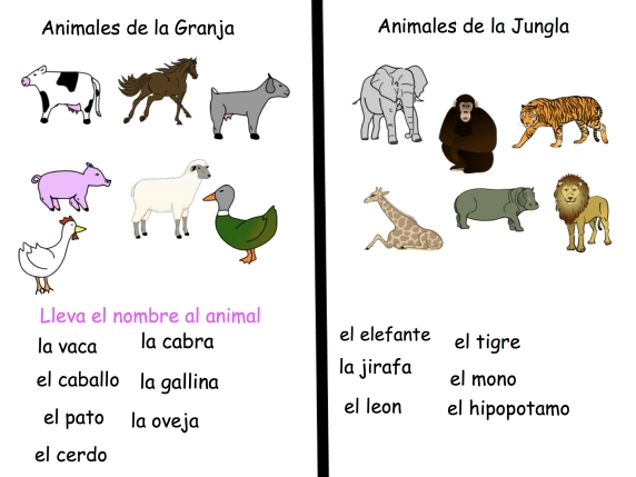 Animal worksheet for smartboard using Pixie 3