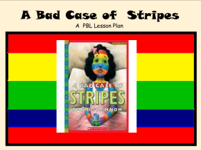 A Bad Case of Stripes Lesson Plan